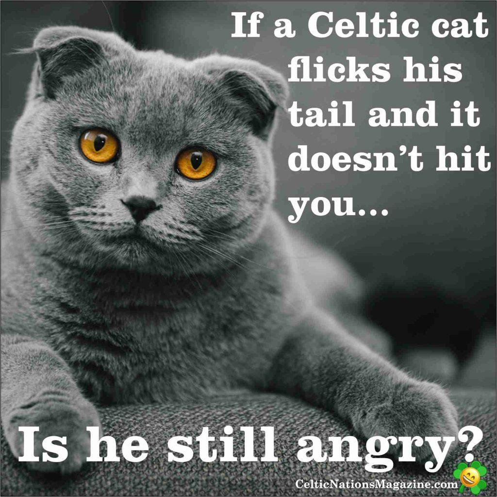 If-A-Celtic-Cat-Celtic-Nations-Magazine-1