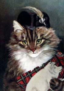 Clan Chief Cat