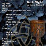 Dark Night by Leesa Birdsall