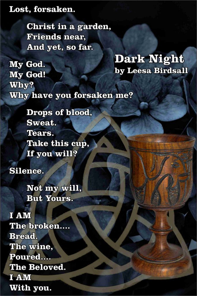Dark Night by Leesa Birdsall