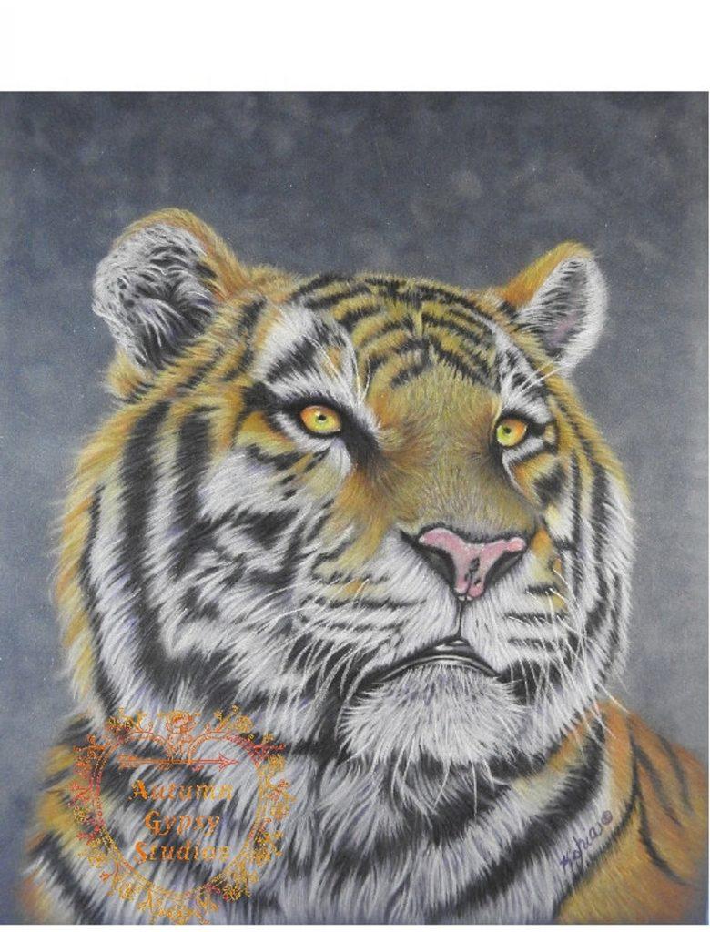 Kathy-Herdzina-Tiger-1