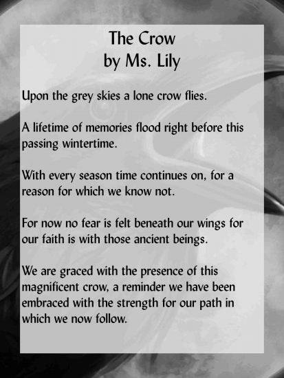 The Crow a Mystic Celtic Poem by Lily Smith