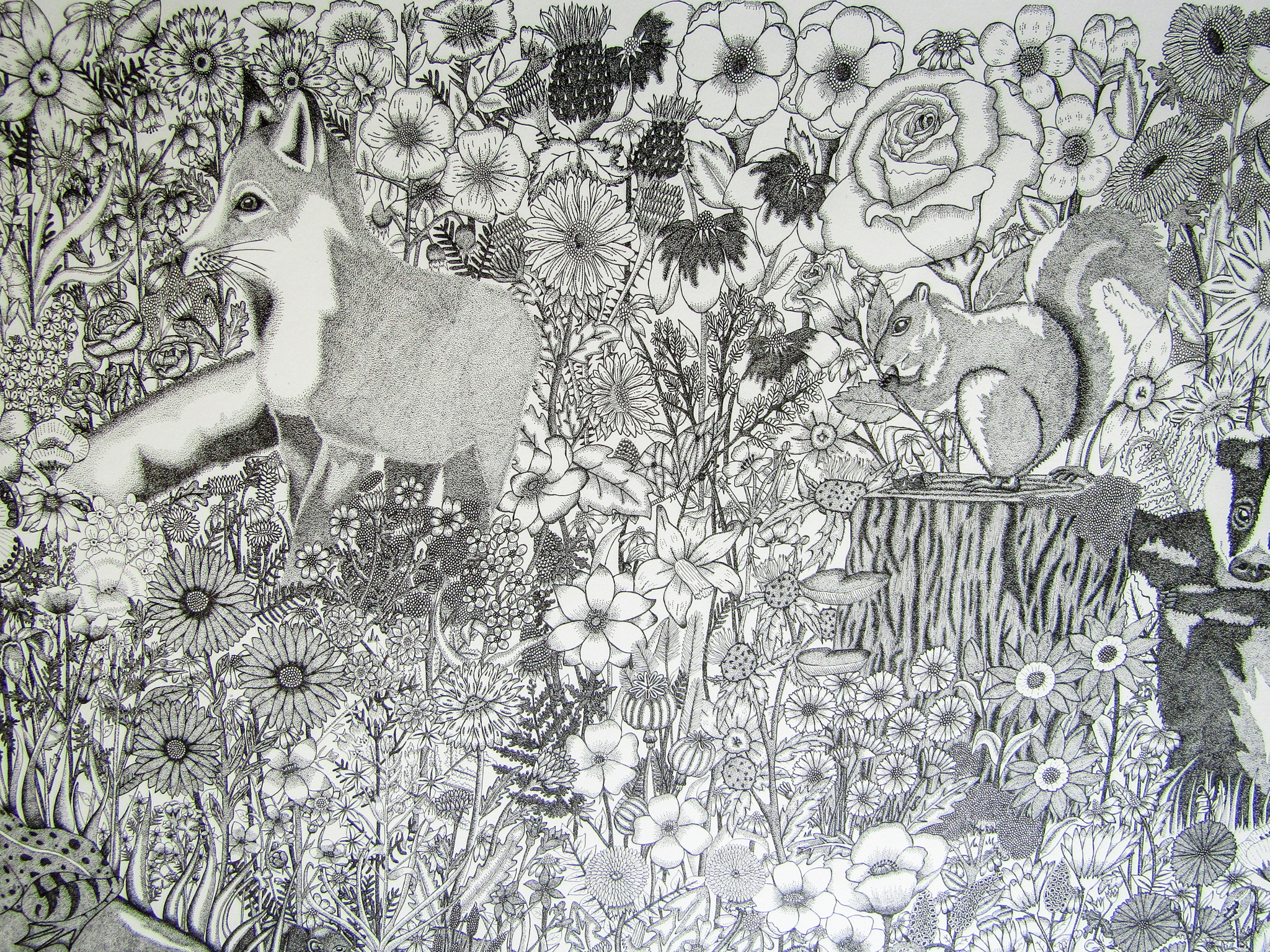 Detail of intricate pen drawing by Corina Fitzgibbon